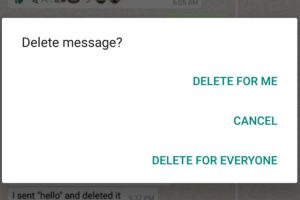 WhatsApp, Delete for Everyone, Feature