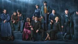 Jude Law plays Dumbledore in 'The Crimes of Grindelwald'; here's what to expect from the film