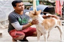 Meet Gulgul, the mongrel who saved his adopted family from gun-toting goons