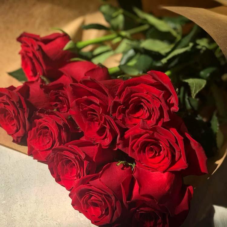 Ileana D'Cruz gets some beautiful roses from boyfriend on Valentine's Day