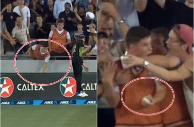 Young spectator takes 'Spectacular' one-handed catch