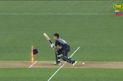 NZ's Mark Chapman gets out in the unluckiest way possible but still manages to smile on his way out