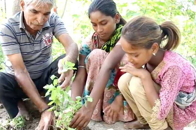 Rajasthan Village Balances Sex Ratio One Sapling At A Time