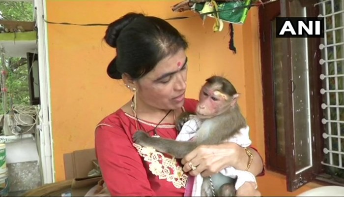 Karnataka Lady Cop Goes Beyond The Call Of Duty, Rescues An Electrocuted Monkey