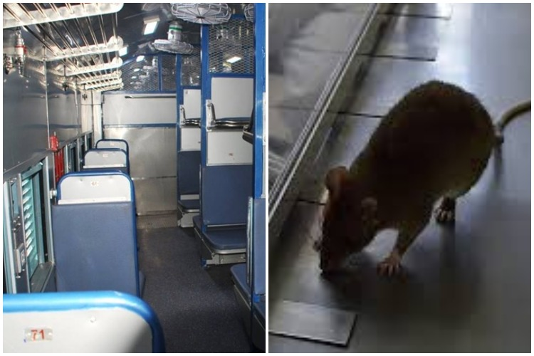 Rail Passenger Gets Rs 19,000 Compensation After She Found Rat Inside Her Coach