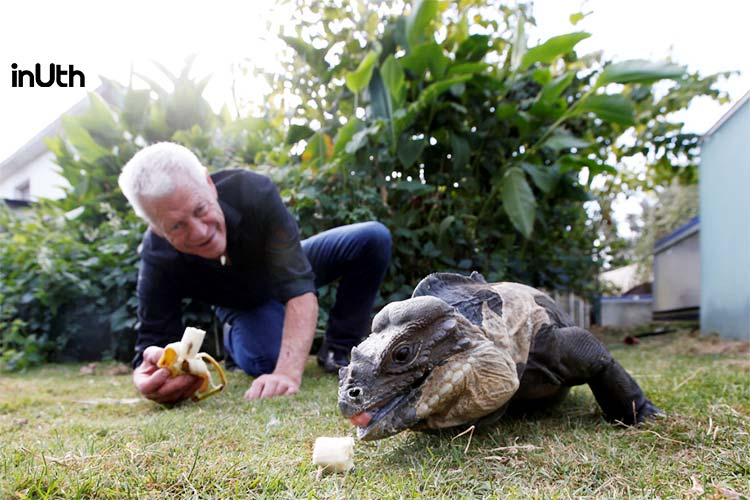The Man Who Shares His Home With 400 Reptiles