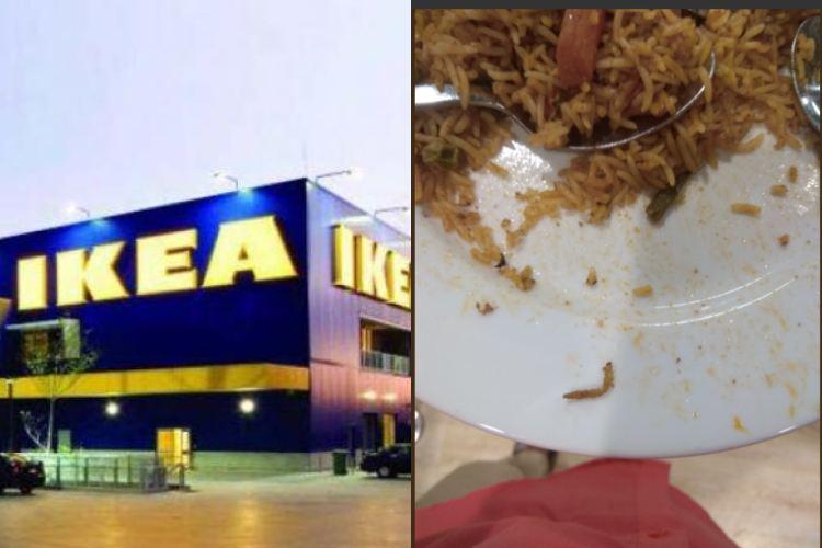 IKEA Customer in Hyderabad shocked to see Caterpillar in Veg Briyani
