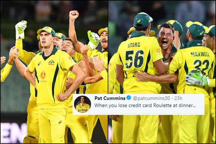Marcus Stoinis Reactions During Aus Vs Sa Are Making People Lol