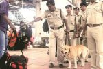 ICYMI: Dog Squad To Sniff Out Those Breaking Bihar's Alcohol Ban Kyunki Why Not