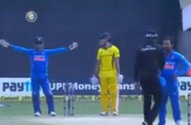 MS Dhoni, Kedar Jadhav, MS Dhoni DRS, Dhoni Review System, Umpire Joe Wilson, India vs Australia 1st ODI 2019, Australia vs India 1st ODI 2019, Australia's tour of India 2019, Dhoni-Jadhav, Marcus Stoinis, Marcus Stoinis funny