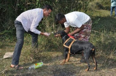 Andhra Police tracker dog