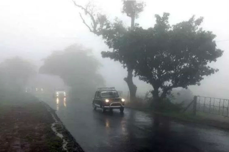 Not Cherrapunji, This Is The Wettest Place On Earth