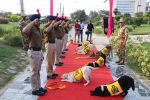 CISF Bids Farewell To Dogs Who Secured Delhi Metro With Full Honours