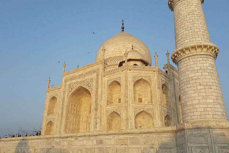 Taj Mahal yellow