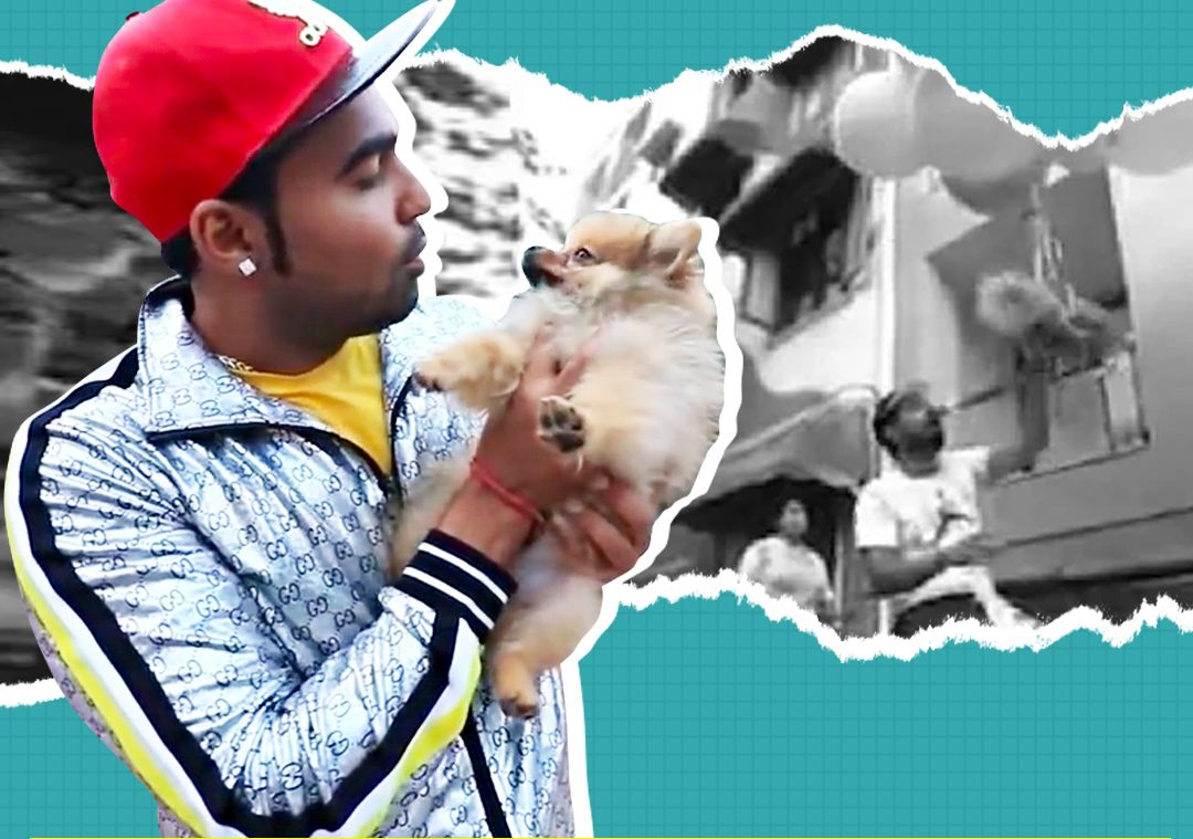 Delhi YouTuber arrested after video of dog flying with helium balloons goesviral